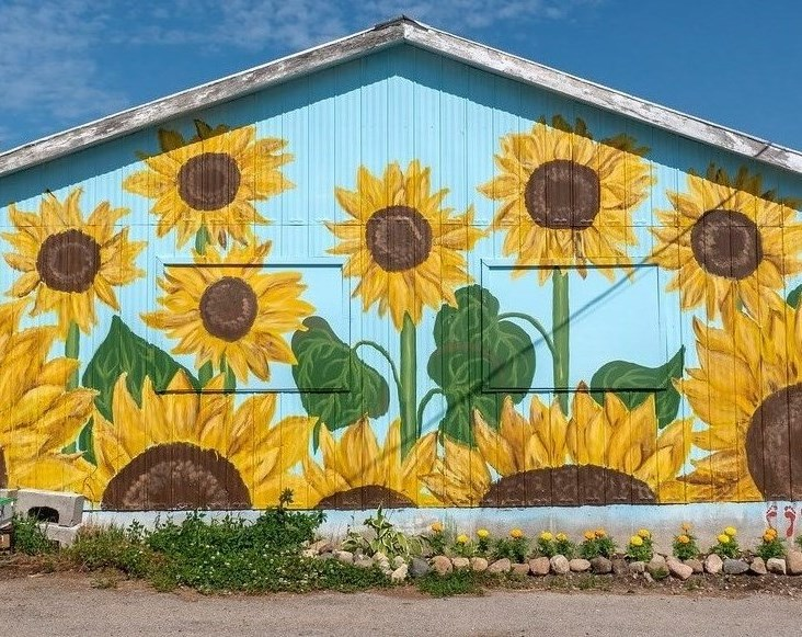 A Mural of Sunflowers