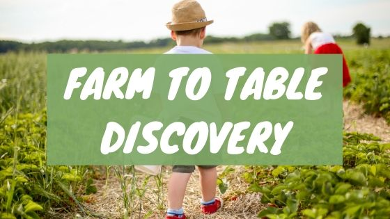 Farm to table discovery