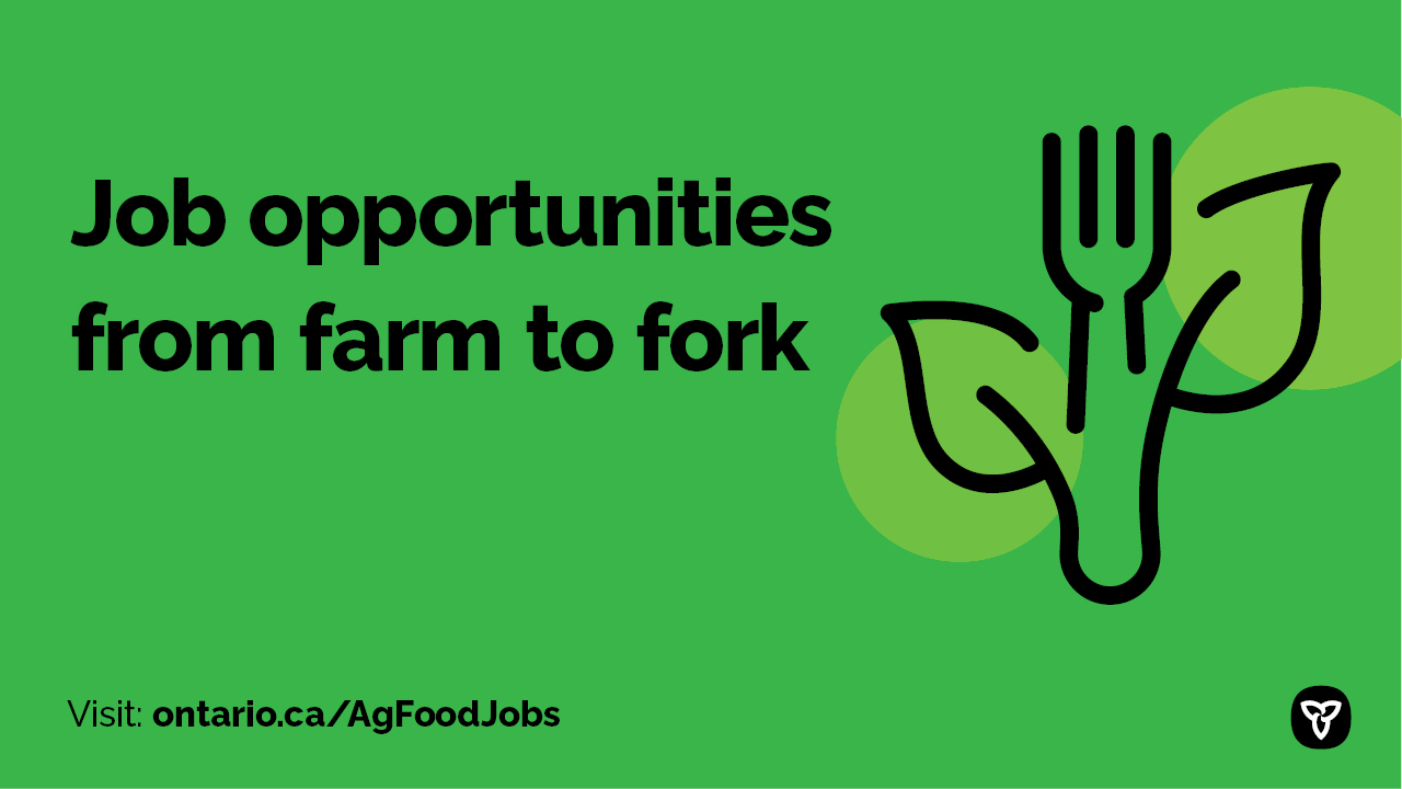 Poster for Ag-Employment Website