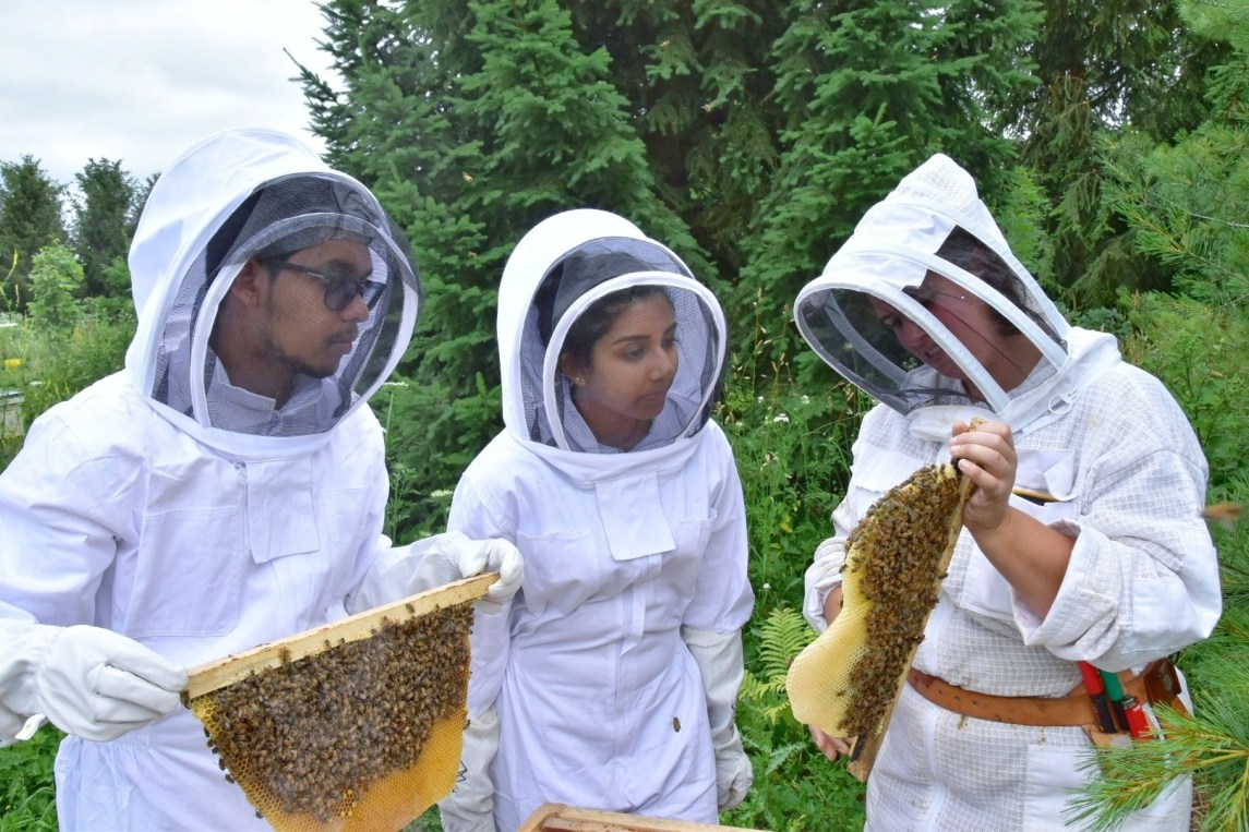 Family in Bee Suits